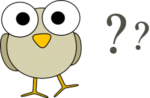 Owl and question marks