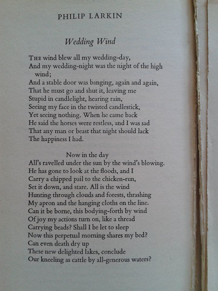 'All's ravelled...' This poem by Philip Larkin features in the title story.